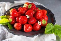 Organicznie świeża truskawka Czerwona truskawka i okwitnięcie truskawka Obraz Royalty Free