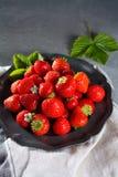 Organicznie świeża truskawka Czerwona truskawka i okwitnięcie truskawka Zdjęcie Stock