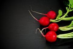 Organicznie świeże czerwone rzodkwie Obrazy Stock