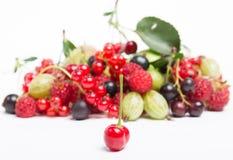 organicznie świeże owoc Obraz Stock