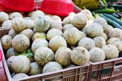 Organicznie świeży kantalupa melon od śródziemnomorskich rolników wprowadzać na rynek Obraz Stock
