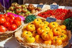 Organicznie świezi pomidory od śródziemnomorskich rolników Zdjęcie Royalty Free