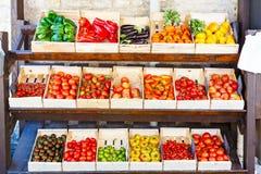 Organicznie świezi pomidory od śródziemnomorskich rolników wprowadzać na rynek w Hiszpania Zdjęcia Royalty Free