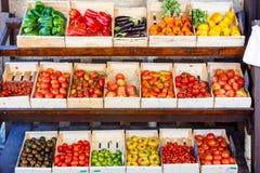 Organicznie świezi pomidory od śródziemnomorskich rolników wprowadzać na rynek w Prov Fotografia Stock