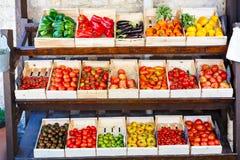 Organicznie świezi pomidory od śródziemnomorskich rolników wprowadzać na rynek w Prov Obrazy Royalty Free