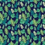 Organicznie świezi ziele zielenieją kulinarnego ziele tło royalty ilustracja