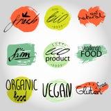 Organicznie, życiorys, ekologia naturalni sklepowi logotypy ustawiający ilustracji