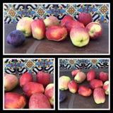 Organicznie Anna jabłka Zdjęcia Stock