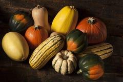 Organicznie Asortowany jesień kabaczek Fotografia Stock