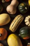 Organicznie Asortowany jesień kabaczek Obraz Royalty Free