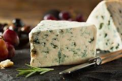 Organicznie Błękitnego sera klin Obrazy Royalty Free