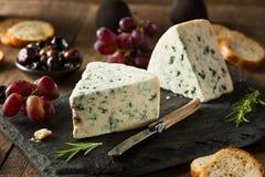 Organicznie Błękitnego sera klin Fotografia Stock