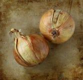 Organicznie cebule na starym wieśniaku drylują ciapanie deskę Zdjęcie Stock