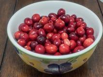Organicznie cranberries Obraz Stock