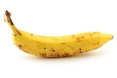 Organicznie dojrzały banan Zdjęcie Stock