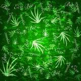 Organicznie eco bezszwowy tło Obraz Royalty Free