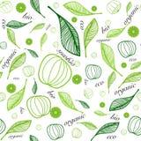 Organicznie eco bezszwowy tło royalty ilustracja