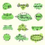 Organicznie eco naturalna odznaka royalty ilustracja