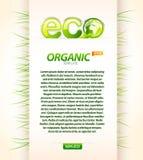 organicznie eco szablon Zdjęcie Stock