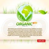 organicznie eco szablon Zdjęcie Royalty Free