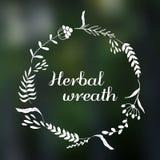 Organicznie eco wiosny ziołowy wianek Obrazy Royalty Free