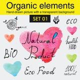 Organicznie elementy i surowi karmowej diety projekty Zdjęcia Royalty Free