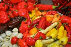 organicznie habanero pieprze zdjęcie stock