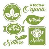 organicznie i naturalny projekt ilustracja wektor