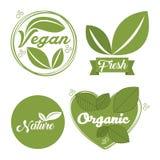 organicznie i naturalny projekt ilustracji