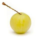 Organicznie Indiański agrest (Phyllanthus emblica) Obraz Stock