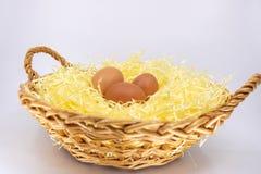 Organicznie jajka od gospodarstwa rolnego w łozinowym koszu wypełniali z słomą obraz stock