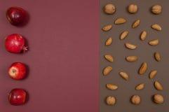 Organicznie jesieni dokrętek i owoc ustawiać odizolowywam na rozszczepionym backgro Obrazy Royalty Free