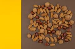 Organicznie jesieni dokrętek i owoc ustawiać odizolowywam na rozszczepionym backgro Zdjęcia Stock