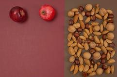 Organicznie jesieni dokrętek i owoc ustawiać odizolowywam na rozszczepionym backgro Obrazy Stock