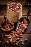 Organicznie kakaowe fasole obrazy royalty free