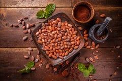 Organicznie kakaowy proszek Fotografia Stock