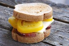 Organicznie kanapka obraz stock