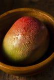 Organicznie Kolorowi Dojrzali mango Obrazy Stock
