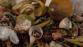 Organicznie kuchenni gruzy z pozostawionym zróżnicowanym jedzeniem i nieorganicznym odpady zbiory