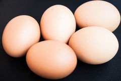 Organicznie kurczaków jajka Obraz Royalty Free