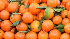Organicznie mandarynki i pomarańczowi clementines z łupa bez leczenia dowcipem Obraz Stock
