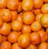 Organicznie mandarynki i pomarańczowi clementines z łupa bez leczenia dowcipem Zdjęcie Stock