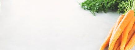 Organicznie marchewki na szarym tle sztandar Obraz Stock