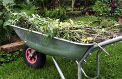 Organicznie materilal od ogródu Obrazy Stock