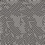 Organicznie Nieregularnych Zaokrąglonych linii Wektorowy Bezszwowy Czarny I Biały wzór Obrazy Stock