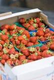 Organicznie Norwescy strawberies w papierowym pudełku Obraz Stock
