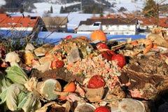organicznie odpady Zdjęcia Royalty Free