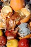 organicznie odpady Obraz Royalty Free