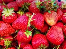 Organicznie owoc przy rolnikami Obrazy Stock