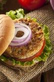 Organicznie Piec na grillu Czarnej fasoli hamburger Zdjęcia Stock